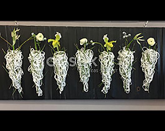Kundenbild klein 8 floristik goldner