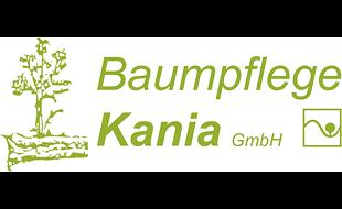 Baumpflege D. Kania