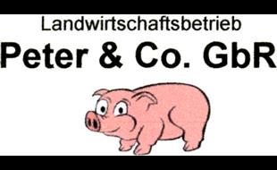 Logo von PETER & Co. GbR Landwirtschaftsbetrieb